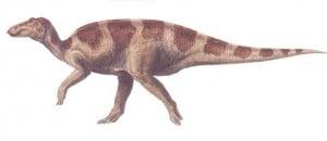 Le dinosaure Maiasaura.