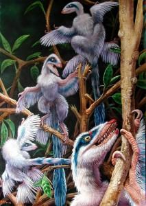 Un groupe de dinosaures à plumes Microraptor.
