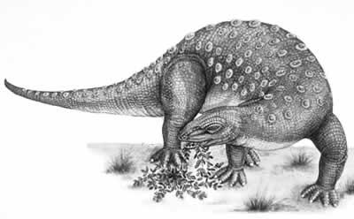 Dinosaure Minmi.
