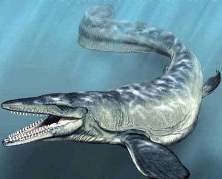 Le reptile marin Mosasaurus.