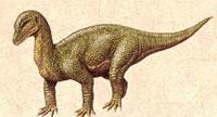 Le dinosaure Mussaurus.