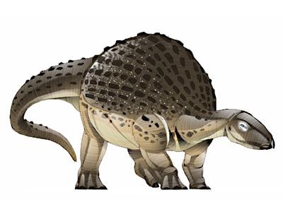 nodosaurus.