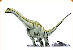 ohmdenosaurus.