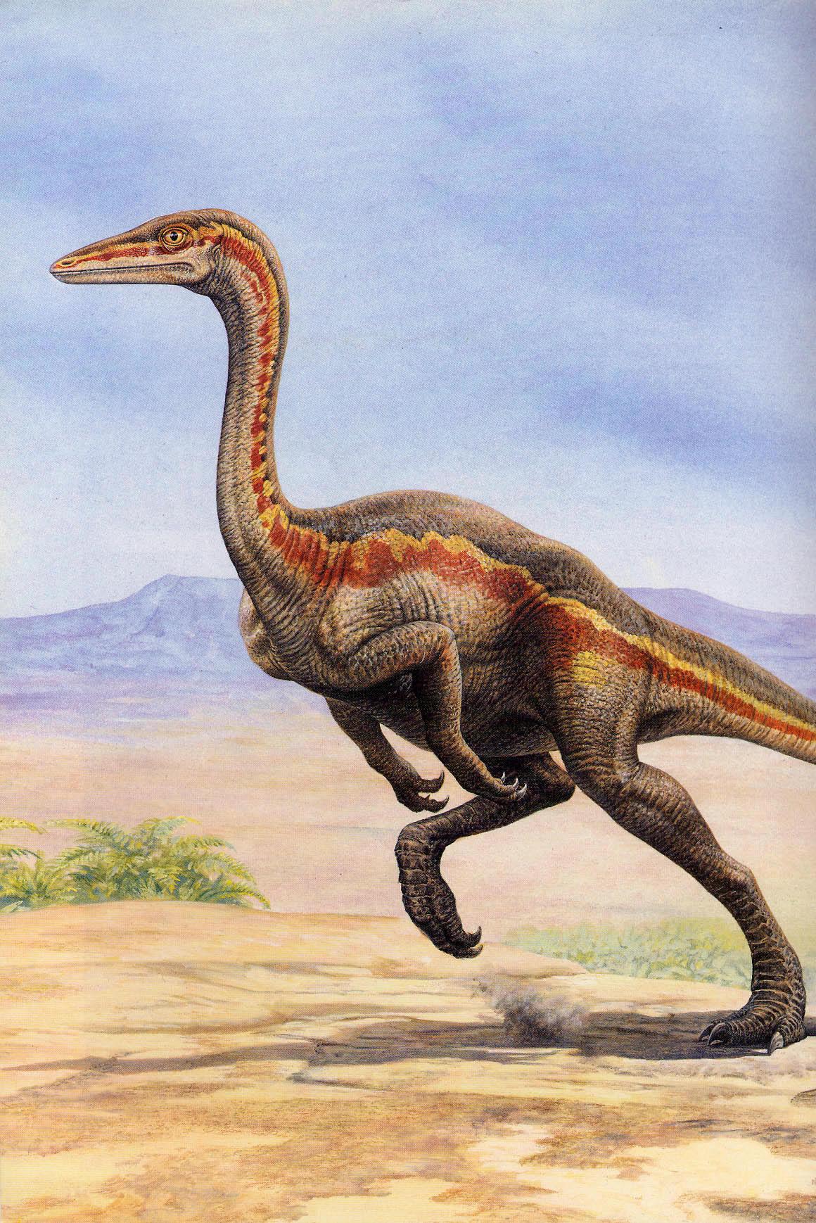 ornithomimus.