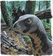 qantassaurus.