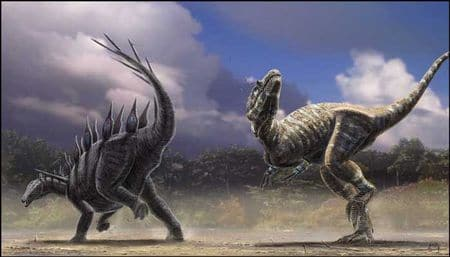 Le stégosaure Lexovisaurus se défend contre l'attaque d'un dinosaure Allosaurus carnivore.