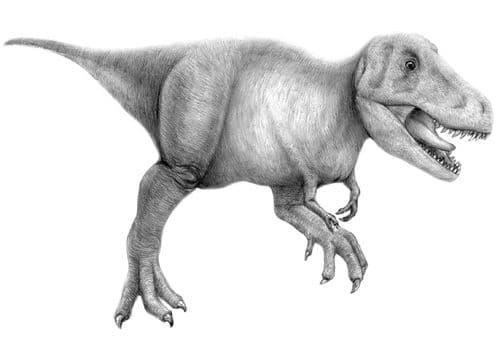 Tarbosaurus.