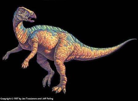 Tenontosaurus.