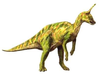 tsintaosaurus.
