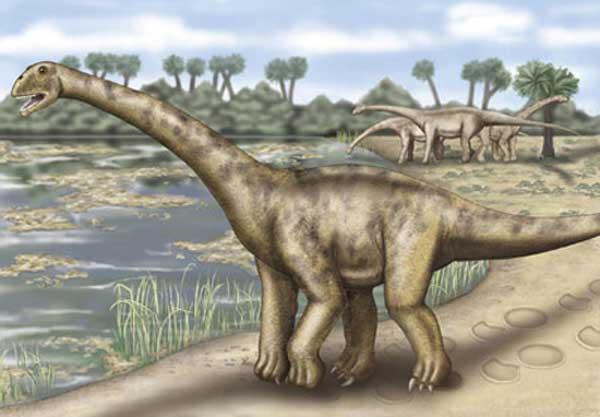turiasaurus.