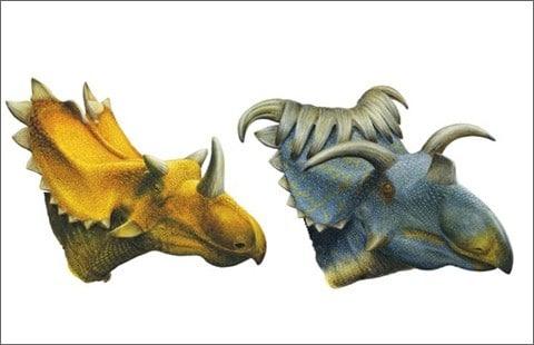 A gauche, Utahceratops.