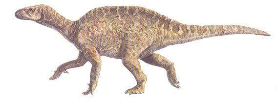 vectisaurus.