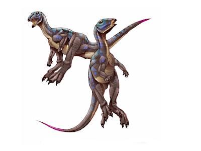 xiaosaurus.