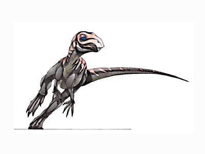 zephyrosaurus.