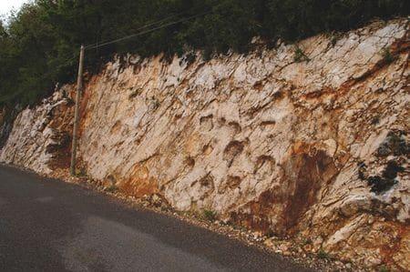 Pistes de pas fossilisés de sauropodes à Coisia (Jura).