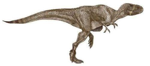 Le dinosaure Indosuchus.