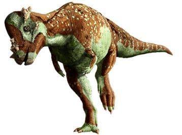 Le dinosaure Pachycephalosaure.