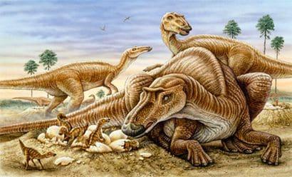 Maman Maiasaura avec ses oeufs et des petits.
