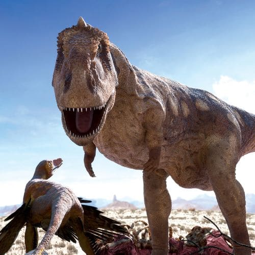 Majungasaurus (Majungatholus).
