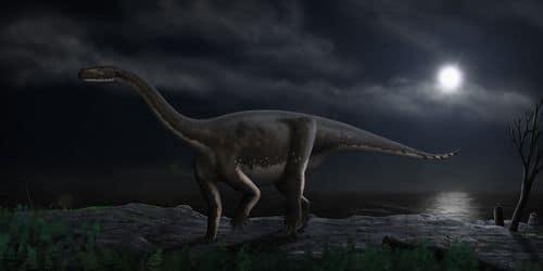 Melanorosaurus.