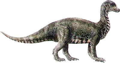 Mussaurus.