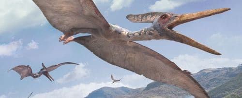 Un vol de Pteranodons, des reptiles volants qui ont vécu au temps des dinosaures.