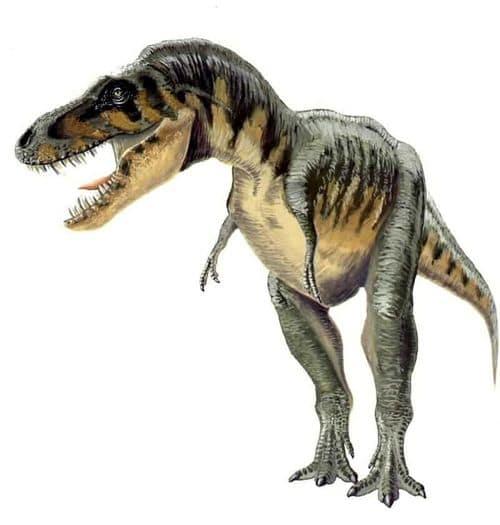 Le dinosaure Tarbosaurus.