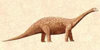 saltasaurus.
