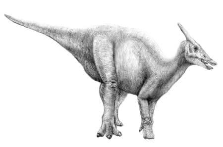 Dinosaure Saurolophus.