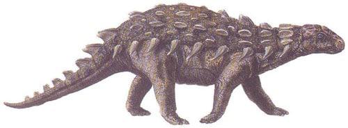 silvisaurus.