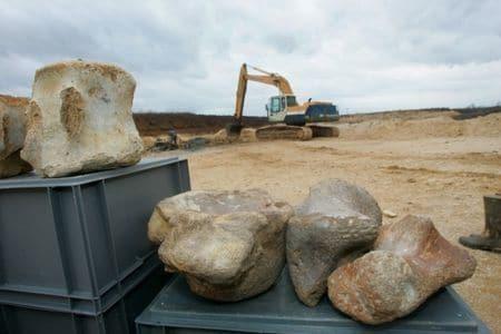 Angeac en Charente : fossiles de dinosaures.