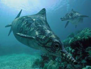 Ophtalmosaurus, un reptile marin.