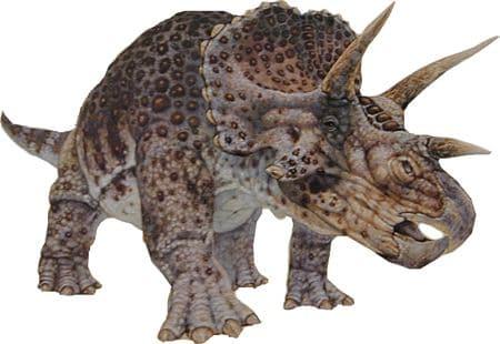 Un dinosaure Triceratops, qui mangeait des végétaux.