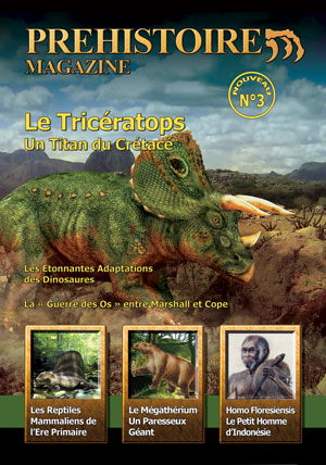 Dinosaure : magazine sur le Triceratops.