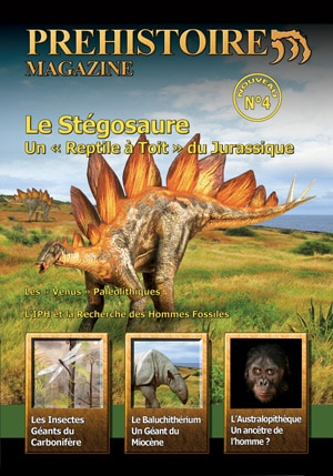 Préhistoire Magazine.