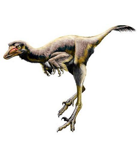 Le dinosaure Talos sampsoni.