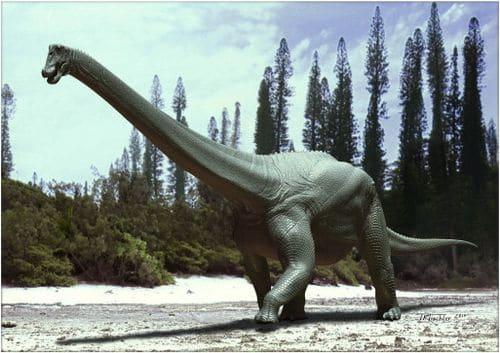 Diamantinasaurus matildae est un titanosaure lithostrotian.