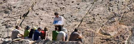 Multiples empreintes fossiles d'Archosaures aux Marécottes en Suisse.