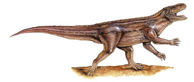 Archosaure.