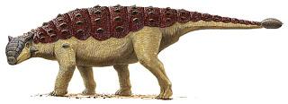Ankylosaurus magniventris serait le plus grand des thyreophorans.