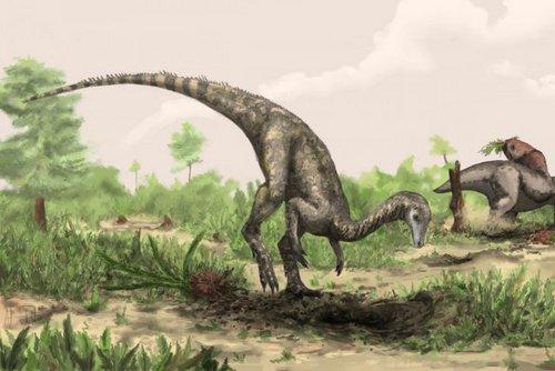 nyasasaurus.
