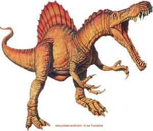 Un dinosaure spinosaure.