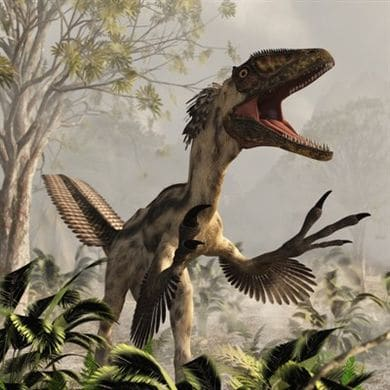 Dinosaure Deinonychus.