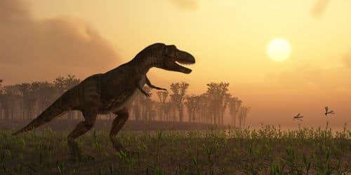 Dinosaure Dahalokely.