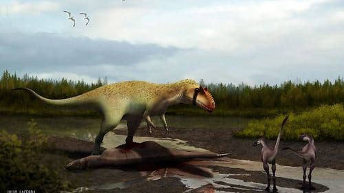 Le dinosaure Siats.