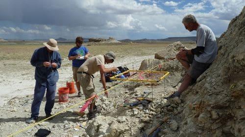 Fouille paléontologique à la recherche de fossiles.