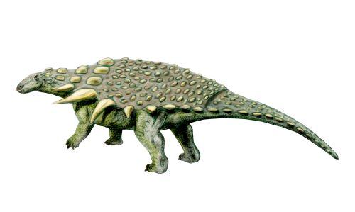 Le dinosaure Acanthopholis.