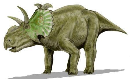 Dinosaure Albertaceratops.