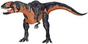 Dinosaure Bayosaurus.