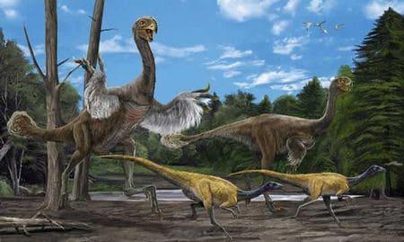 Le dinosaure Gigantoraptor.